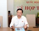 Pháp luật sẽ không bảo vệ những đối tượng người nước ngoài 'núp bóng' mua đất tại Việt Nam