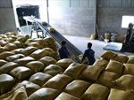 Philippines bỏ hạn ngạch nhập khẩu gạo, Việt Nam có thể hưởng lợi