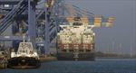 Mỹ-Trung chiến tranh thương mại, Ấn Độ lên danh mục hàng hóa lấp khoảng trống