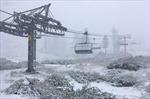 Kỳ lạ tuyết rơi giữa mùa hè ở California, Mỹ