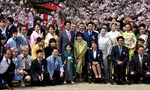 Lý do Thủ tướng Nhật Bản hủy tổ chức tiệc ngắm hoa anh đào 2020