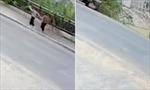 Hố tử thần lớn 'nuốt' người trên vỉa hè Trung Quốc