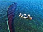 Thảm họa tràn dầu đe dọa nghiêm trọng sinh thái biển Mauritius