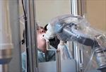 Cánh tay robot xét nghiệm COVID-19 tại Trung Quốc