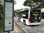 Singapore bắt đầu thử nghiệm xe buýt tự lái