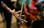 Gà chọi... đâm dao khiến chủ tử vong