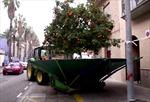 Máy cày rung cam 'nhiệt tình' tại Tây Ban Nha
