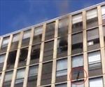 Mèo tự nhảy khỏi tầng 5 tòa nhà đang cháy