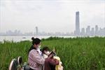 Vành đai kinh tế sông Dương Tử - Điển hình chuyển đổi mô hình kinh tế của Trung Quốc