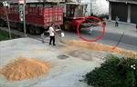 Cậu bé may mắn sống sót sau khi bị máy gặt đập cán qua người