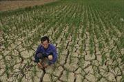 Hạn hán nặng ở Trung Quốc