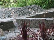 Ngôi mộ chữa bệnh ở Huế chỉ là tin đồn thất thiệt