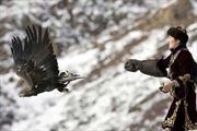 Đại bàng vàng săn mồi - vẻ đẹp vùng Trung Á