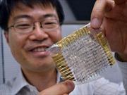 Nhật Bản phát triển thiết bị cảm biến siêu nhỏ