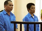 Lừa đảo hàng tỷ đồng, cán bộ xã lãnh 12 năm tù