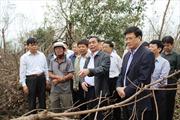 Khắc phục hậu quả thiên tai ở Quảng Bình