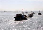 Nỗ lực cứu ngư dân bị cá cắn trọng thương trên biển