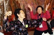 Hàn Quốc đề xuất thường xuyên đoàn tụ gia đình ly tán