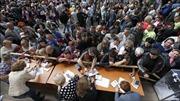 Luhansk sẽ hủy bầu cử tổng thống Ukraine, dự định sáp nhập Nga