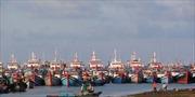 Ngư dân vẫn kiên trì bám biển quanh khu vực giàn khoan 981