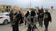 Phiến quân Hồi giáo Iraq thả 46 y tá Ấn Độ
