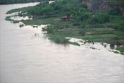Tắm sông, hai em nhỏ chết đuối thương tâm