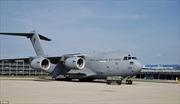 Australia dùng máy bay quân sự chở thi thể nạn nhân MH17 về nước