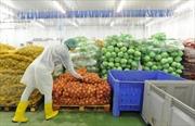 Nga cấm nhập chế phẩm từ sữa của Ukraine