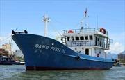 Ngư dân băn khoăn với tàu vỏ thép