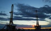 Petronas đầu tư khai thác dầu khí đá phiến tại Argentina