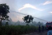 Đường dây 500kV Bắc Nam gặp sự cố 2 lần do cháy rừng