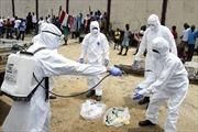 """Nguy cơ virus Ebola """"nhập cảnh"""" Pháp và Anh"""