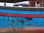 Vụ tàu cá va chạm với sà lan Malaysia: Tìm thấy thi thể thuyền trưởng
