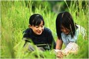 Liên hoan phim Nhật Bản tại Bà Rịa -Vũng Tàu