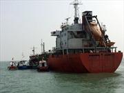 Cảng Cửa Việt đón tàu Sunrise 689 trở về an toàn
