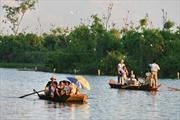 Đưa Đảo Cò thành khu du lịch sinh thái hấp dẫn