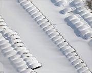 New York im lìm trong 'lũ tuyết'