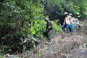 Cán bộ bảo vệ rừng bị hành hung
