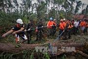 Philippines nỗ lực phục hồi sau siêu bão Hagupit