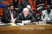 HĐBA LHQ thông qua nghị quyết về thỏa thuận hòa bình tại Ukraine