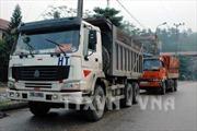 Quảng Ninh: Bắt 13 xe tải chở than trái phép