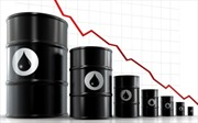 Đầu tư vào bất động sản vẫn tăng dù giá dầu giảm