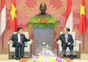 Chủ tịch Quốc hội tiếp Chủ tịch Hạ viện Indonesia