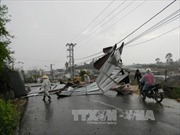 Đắk Nông: Mưa đá, lốc xoáy gây thiệt hại hơn 2 tỉ đồng