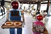 Người máy giúp việc cho con người