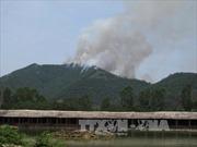 Đã khống chế vụ cháy rừng phòng hộ Thanh Hóa