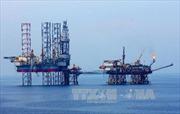 Thúc đẩy hợp tác quốc tế trong vùng biển Việt Nam - Bài 2