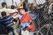 Người tị nạn Syria chạy sang Thổ Nhĩ Kỳ trốn IS