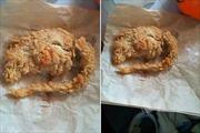 Ớn lạnh gà KFC là... chuột chiên giòn