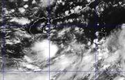 Từ Quảng Ninh đến Bình Thuận chủ động đối phó áp thấp nhiệt đới